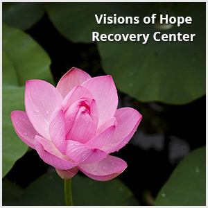 Visions of Hope QuickLink